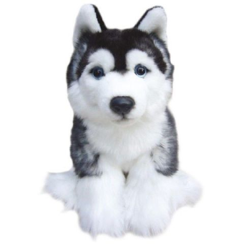 Siberian Husky, gift wrapped, not gift wrapped with or without engraved tag